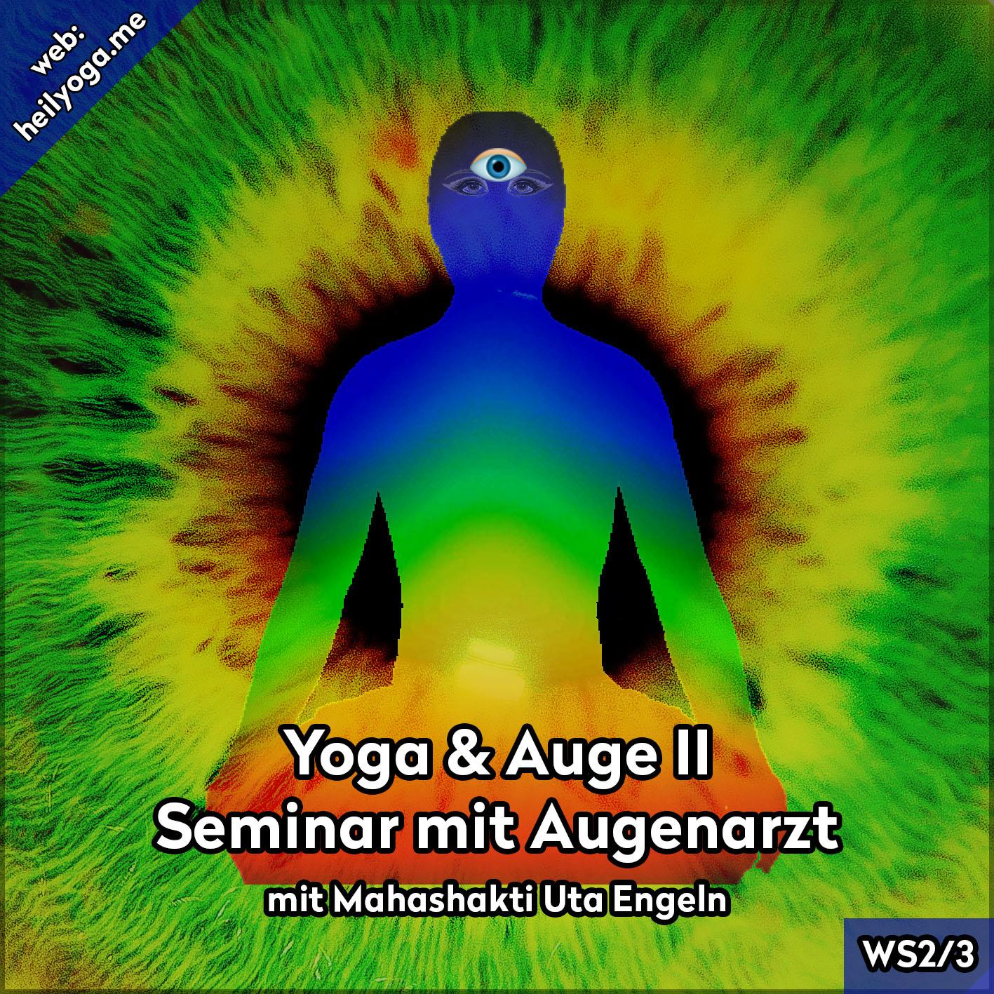 Yoga & Augen II – Seminar mit Augenarzt (MP3)