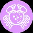 Icon Krebserkrankung Carzinom