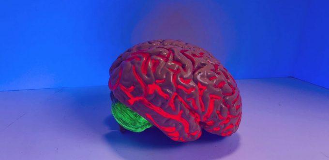 Swara-Yoga ist die Wissenschaft der Hirn-Steuerung