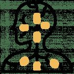 Nadis - Meridiane - Blutkreislauf - Nervensystem