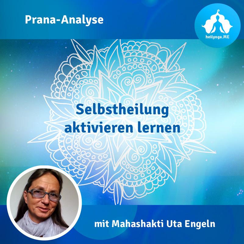 Cover_Prana-Analyse_800px