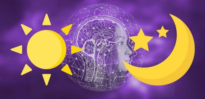 Nadis und Gehirnzentren - sonnenenergie - Mondenergie