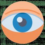 Selbstbeobachtung-Nasenloch-Gehirn-Verbindung