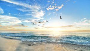 💨 Yoga-Heilung 2: Freiheit für die Atemwege (bei Schnupfen, Bronchitis & Asthma, Sinusitis)