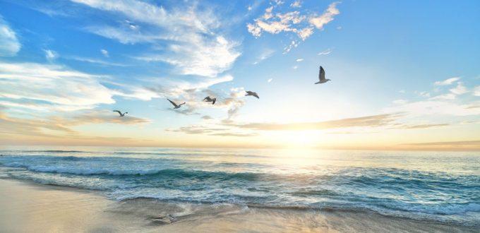 Freiheit für die Atemwege